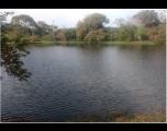 Prefeitura de Tietê deu início a limpeza do Parque Ecológico