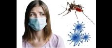 Informe-se sobre o Coronavírus