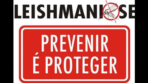 Semana de prevenção da leishmaniose visceral