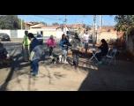 Vacinação em cães e gatos em Laranjal