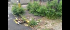 Vereador pede mais limpeza em ruas e calçadas de públicos
