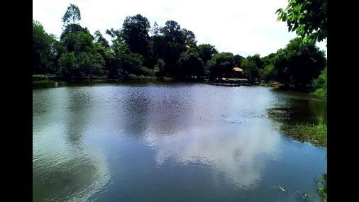 SEMADES divulga processo de limpeza dos lagos do Parque Cornélio