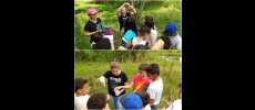 Alunos do 5º ano fazem investigações na Nascente Modelo
