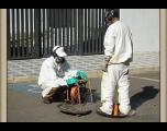 SAAEC informa sobre desinsetização