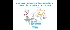 Companha de vacinação antirrábica terá início em setembro