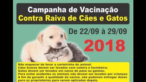 Programação da Vacinação contra raiva em cães e gatos