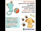 Beto Rodrigues aprova lei que garante maior proteção aos animais