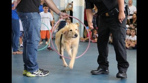 Cães do GOC realizam trabalho terapêutico no Lar São José