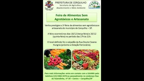 1ª Feira de alimentos sem agrotóxicos e de Artesanato