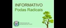 Prefeitura informa população sobre Podas Ilegais de Árvores