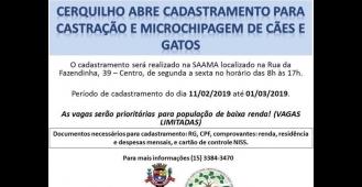 Prefeitura abre cadastro para castração para cães e gatos