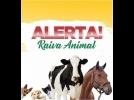 Prefeitura de Cerquilho informa sobre Raiva em bovinos e equinos